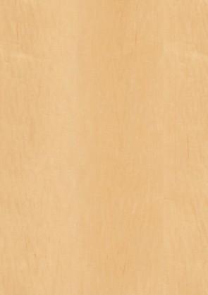 Muster Echtholztür Ahorn furniert