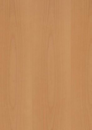 Muster Echtholztür Buche furniert