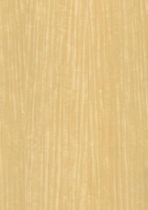 Muster Echtholztür Limba furniert