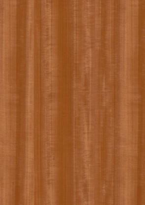 Muster Echtholztür Macore furniert