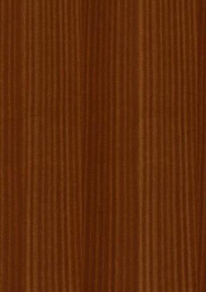 Muster Echtholztür Mahagoni furniert