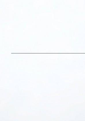 Muster Tür CPL Superweiß Lisene L7